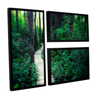 ArtWall Elena Ray 'Earth Path ' 3 Piece Floater Framed Canvas Flag Set