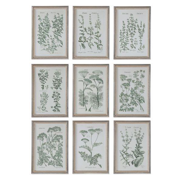 Herb Garden Prints (Set of 9) - Multi