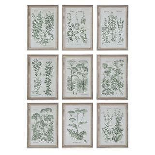 Herb Garden Prints (Set of 9)|https://ak1.ostkcdn.com/images/products/11048345/P18060711.jpg?impolicy=medium