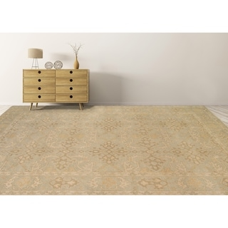 Ariel Light Green Traditional Border Design Hand-knotted Rug (10'x14')
