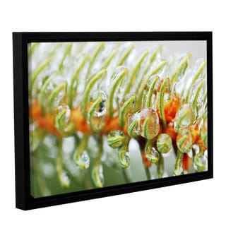 ArtWall Sydney Schardt's Ice On Pine, Gallery Wrapped Floater-framed Canvas