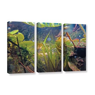 ArtWall Ed Shrider's Lake Hope UW #6, 3 Piece Gallery Wrapped Canvas Set