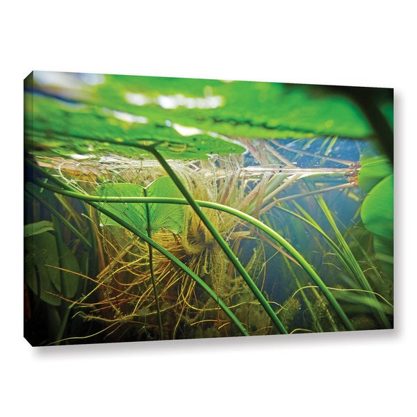 ArtWall Ed Shrider's Butler Lake #9, Gallery Wrapped Canvas