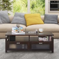 Furniture of America Bauston Espresso Brown Modern Storage Coffee Table
