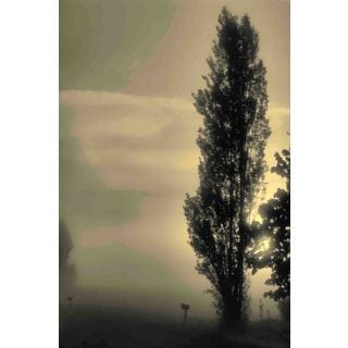 Marmont Hill - Daybreak on a Country Road Painting Print on Canvas