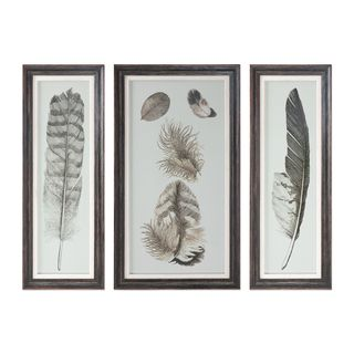 Feather Study Prints (Set of 3)