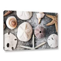 ArtWall Elena Ray 'Treasures From The Sea' Gallery-wrapped Canvas - white/grey/tan