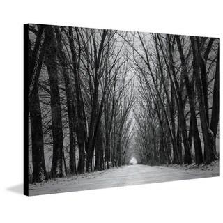 Parvez Taj - Rows of Trees Painting Print on Brushed Aluminum