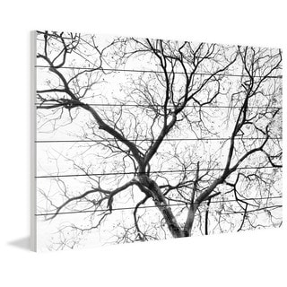 Parvez Taj - Black Branches Painting Print on White Wood