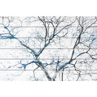 Parvez Taj - Blue Branches Painting Print on White Wood