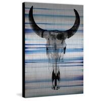 Parvez Taj - Long Skull Face Painting Print on Brushed Aluminum