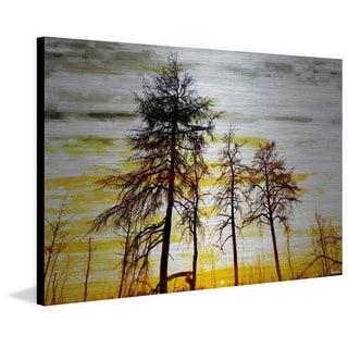 Parvez Taj - Trees Against Gold Sky Painting Print on Brushed Aluminum