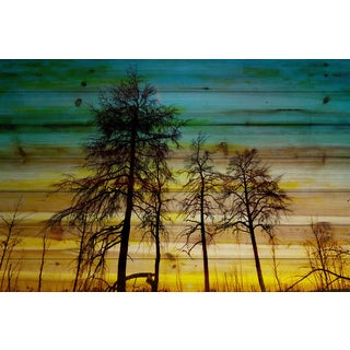 Parvez Taj - Emerald Sky Painting Print on Natural Pine Wood