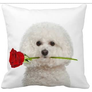 Bichon Frise With a Rose 16-inch Throw Pillow|https://ak1.ostkcdn.com/images/products/11092595/P18099040.jpg?impolicy=medium