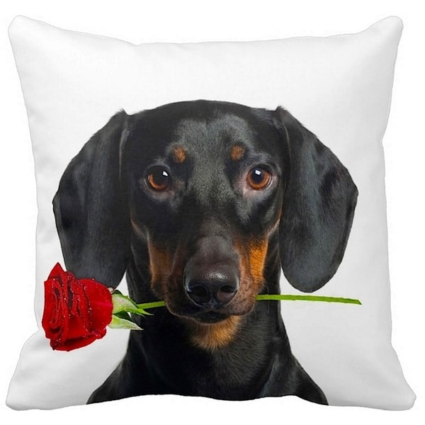 Valentine's Dachshund Black With a Rose 16-inch Throw Pillow