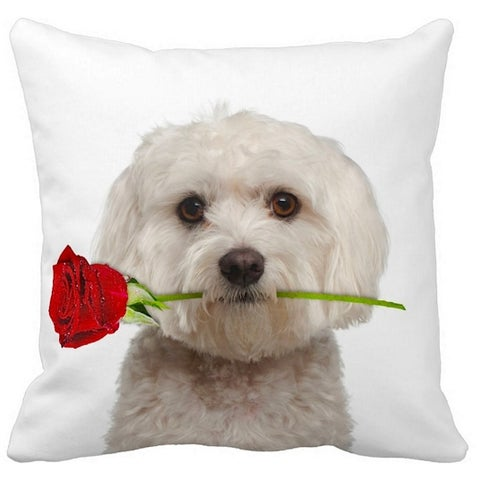 Maltese With a Rose 16-inch Throw Pillow