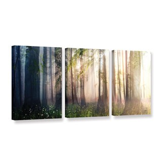 ArtWall Cynthia Decker 'Constancy' 3 Piece Gallery-wrapped Canvas Set