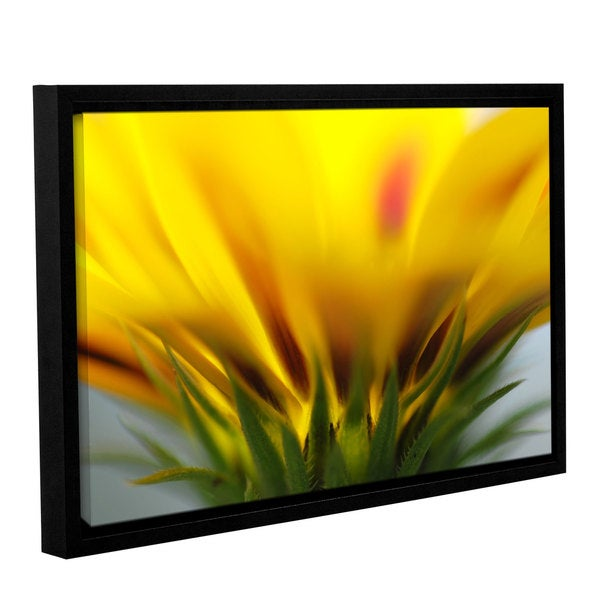 ArtWall Sydney Schardt's Mexican Daisy, Gallery Wrapped Floater-framed Canvas - Multi