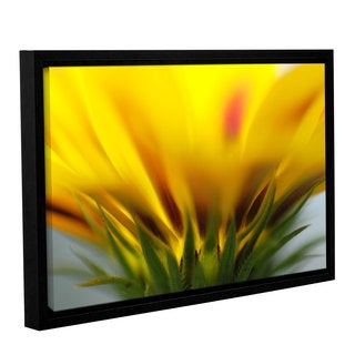 ArtWall Sydney Schardt's Mexican Daisy, Gallery Wrapped Floater-framed Canvas