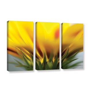 ArtWall Sydney Schardt's Mexican Daisy, 3 Piece Gallery Wrapped Canvas Set