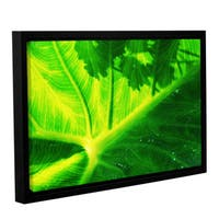 ArtWall Sydney Schardt's Green On Green, Gallery Wrapped Floater-framed Canvas