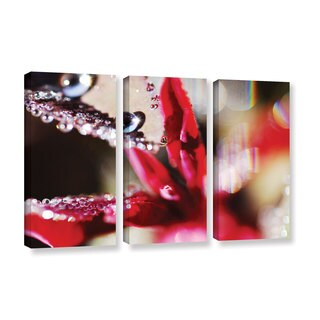 ArtWall Sydney Schardt's Reaching For Raindrops, 3 Piece Gallery Wrapped Canvas Set