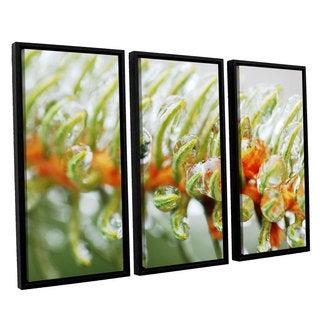 ArtWall Sydney Schardt's Ice On Pine, 3 Piece Floater Framed Canvas Set