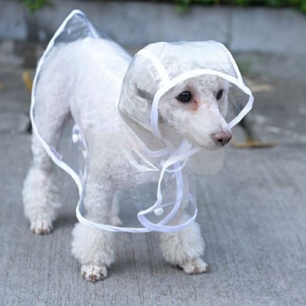 White/Clear Waterproof Hoodie Rain Dog Jacket