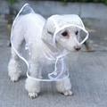 White/Clear Waterproof Hoodie Rain Dog Jacket
