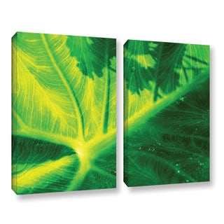 ArtWall Sydney Schardt's Green On Green, 2 Piece Gallery Wrapped Canvas Set
