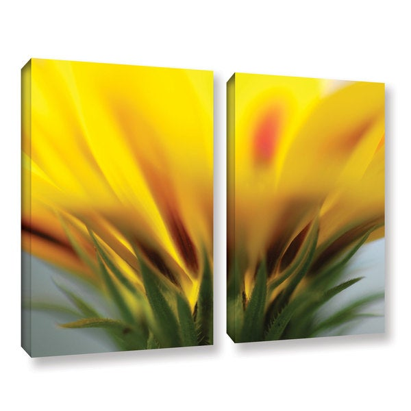 ArtWall Sydney Schardt's Mexican Daisy, 2 Piece Gallery Wrapped Canvas Set