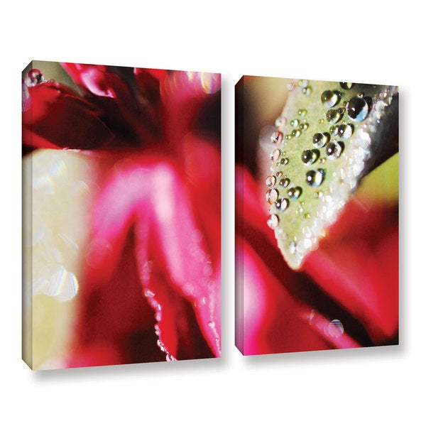 ArtWall Sydney Schardt's Raindrops Hovering Over Red, 2 Piece Gallery Wrapped Canvas Set