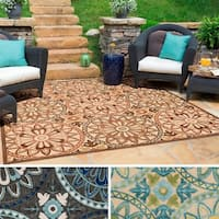 Chaboys Indoor/ Outdoor Area Rug