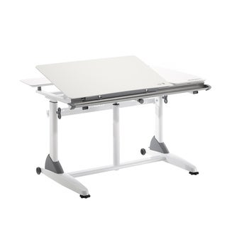 Kid's Ergonomic Adjustable Height Desk