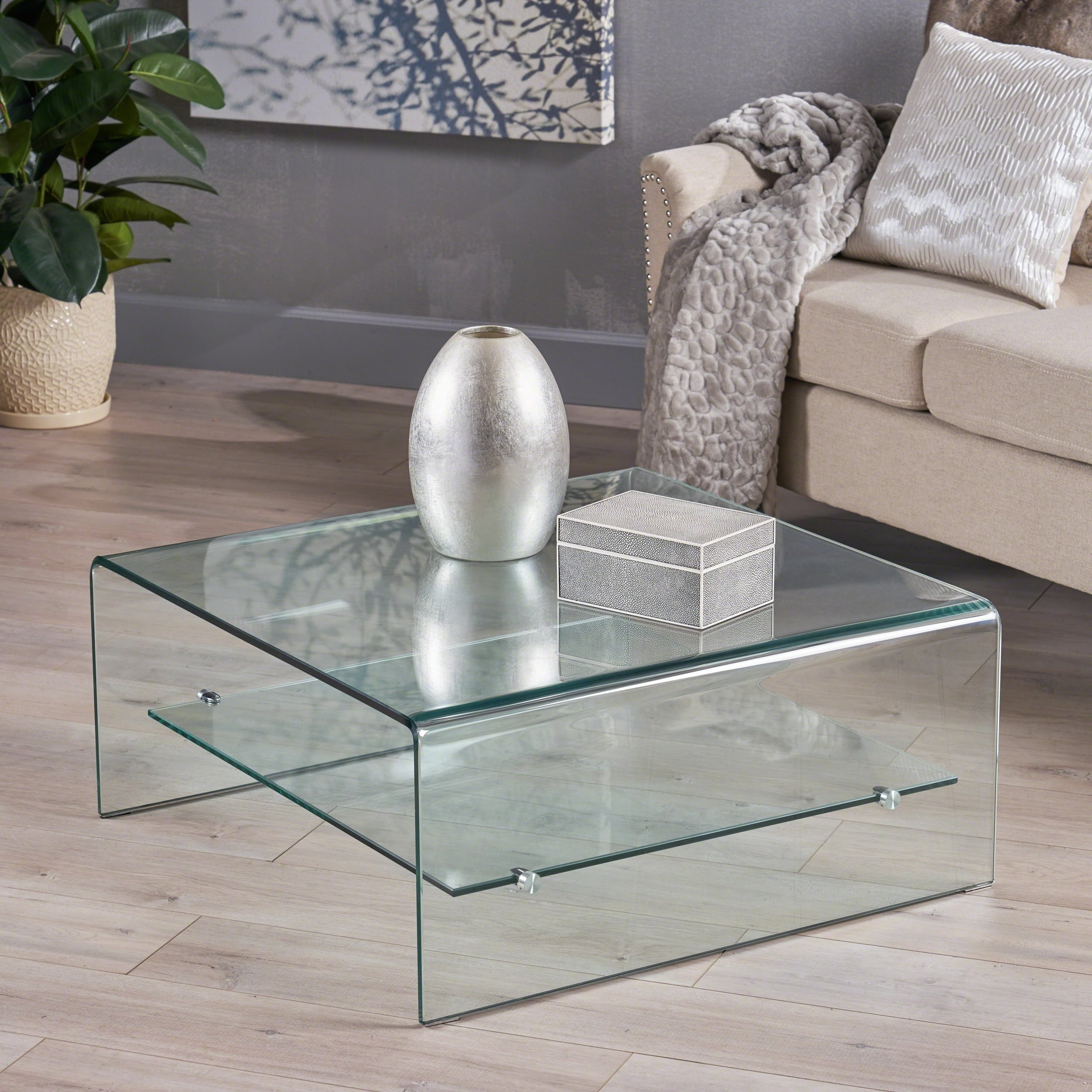 Picture of: Ramona Square Glass Coffee Table With Shelf By Christopher Knight Home Overstock 11152128