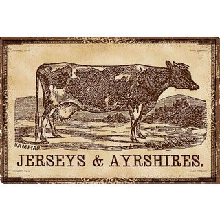 Marmont Hill - 'Cows Jerseys' Painting Print on Canvas