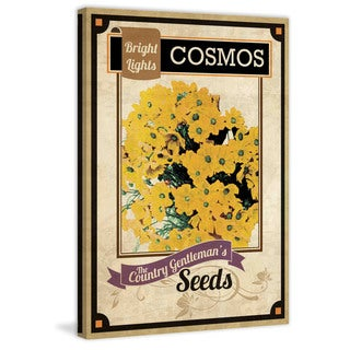 Marmont Hill - 'Flower Packet Cosmos' Painting Print on Canvas