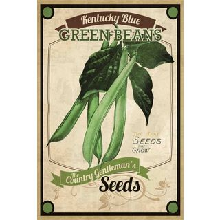 Marmont Hill - 'Seed Packet Green Beans' Painting Print on Canvas - Multi-color