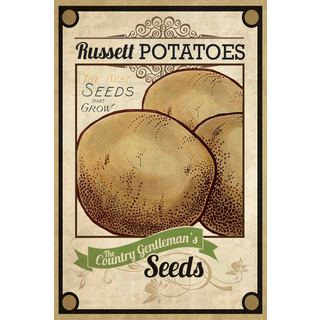 Marmont Hill - 'Seed Packet Potatoes' Painting Print on Canvas - Multi-color