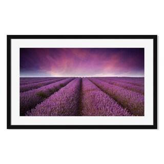Gallery Direct Lavender Field Summer Sunset Print on Paper Framed Print