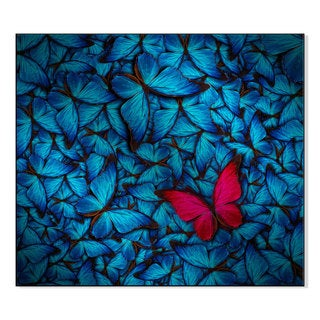 Gallery Direct Blue and Pink Butterfly Print on Mounted Metal Wall Art