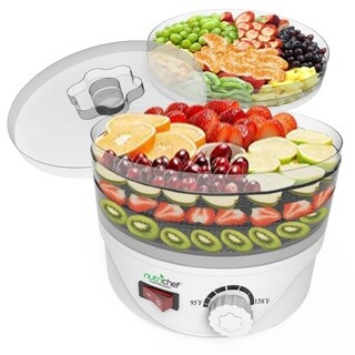 Pyle PKFD08 Electric Countertop Food Dehydrator, Food Preserver
