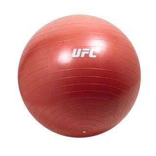 55cm Anti Burst Stability Ball