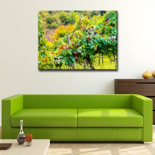 Ready2HangArt Bruce Bain 'Tuscan Landscape III' Photographic Canvas Art