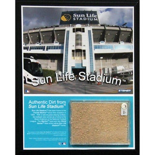Sun Life Field 8x10 Dirt Plaque