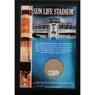 Sun Life Field 4x6 Dirt Plaque