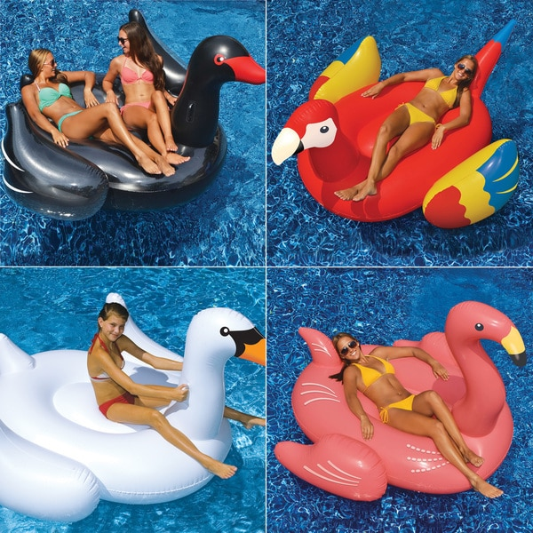 Swimline Giant White Swan, Giant Flamingo, Giant Black Swan and Giant Parrot 4-Pack for Swimming Pools