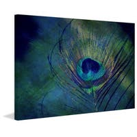Marmont Hill - 'Plume Robin Dickinson' by Robert Dickinson Painting Print on Canvas - Multi-color