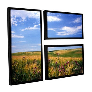 ArtWall Kathy Yates's Field of Dreams, 3 Piece Floater Framed Canvas Flag Set