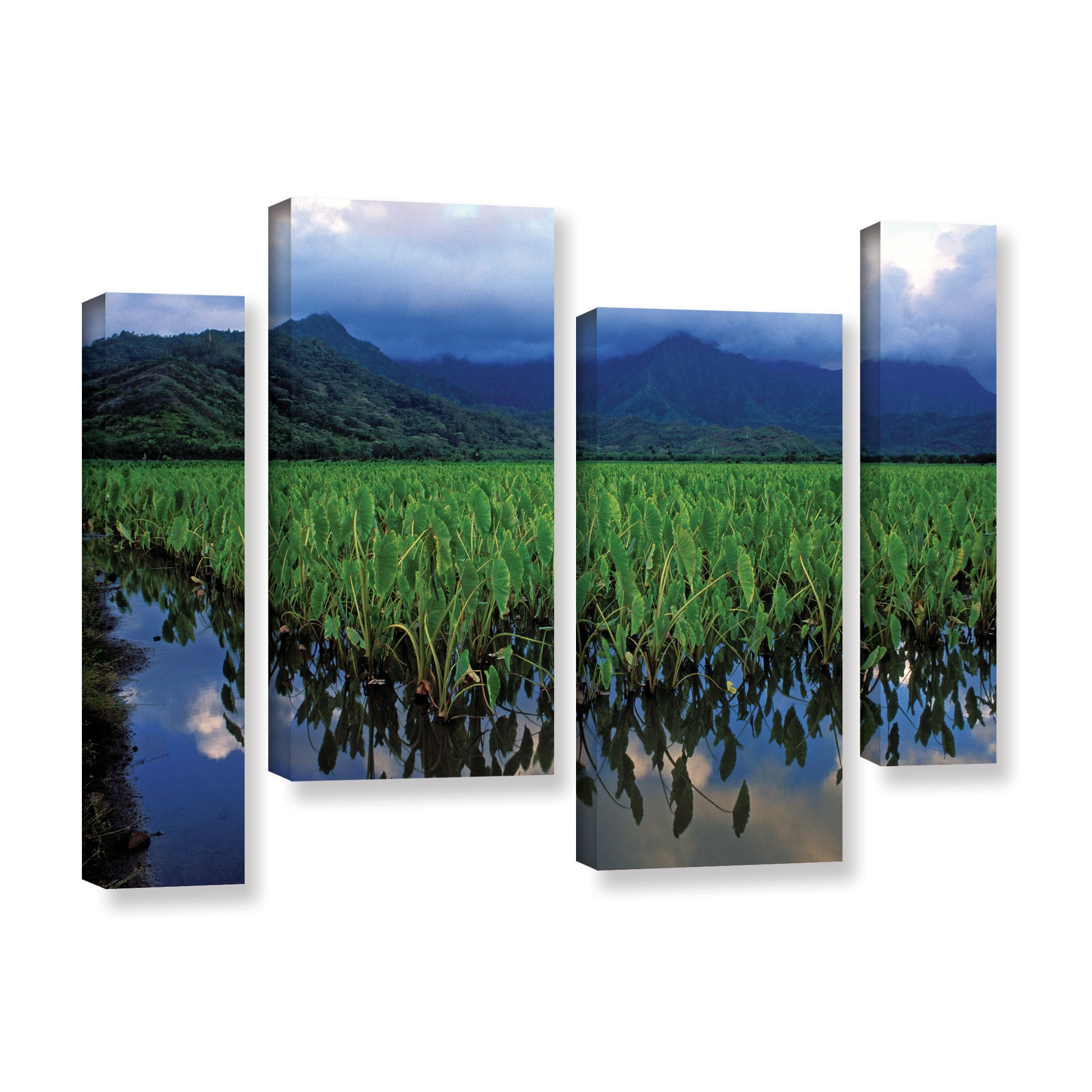 Shop Artwall Kathy Yates S Kauai Taro Field 4 Piece Gallery Wrapped Canvas Staggered Set Multi On Sale Overstock 11326584